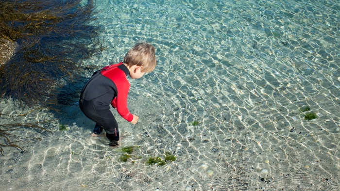 A  boy in a wetsuit stands in the clear sea on Tresco Island.