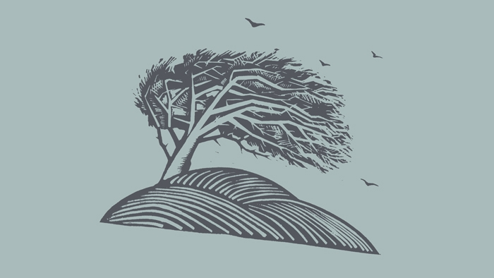 A linocut print of a tree.