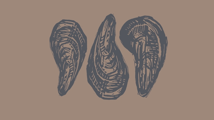 A linocut print of three mussels.