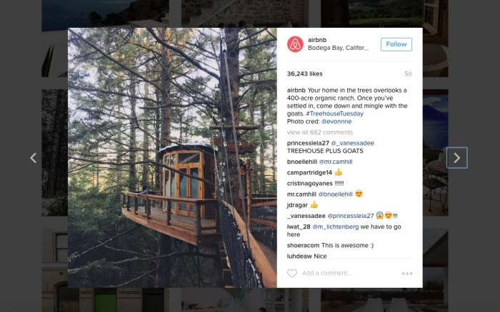 A screenshot of a photo of a sophisticated tree house from Airbnb's Instagram account.
