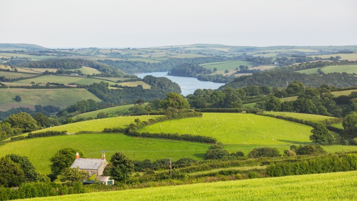 Rolling hills and fields in Cornwall, with a river in the distance.