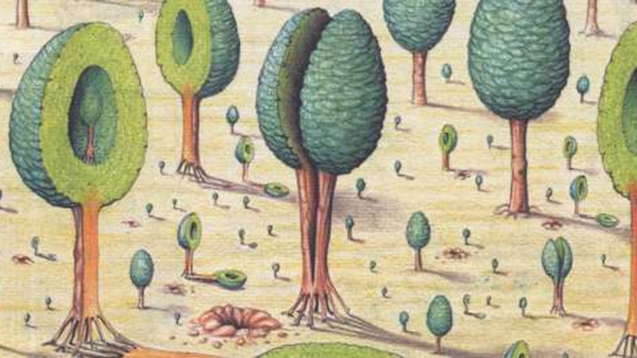 Splitting trees from the Codex Seraphinianus by Luigi Serafini