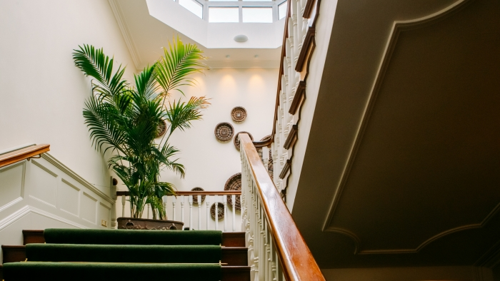 The grand staircase at Sheen Falls Lodge, with a plant on the landing.